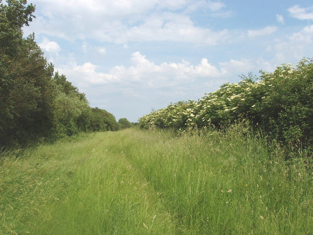 Bridleway to Long Crendon