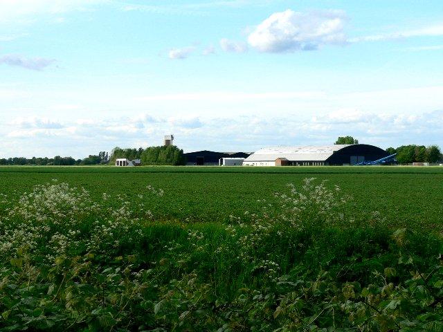 Tollingham Industrial Estate