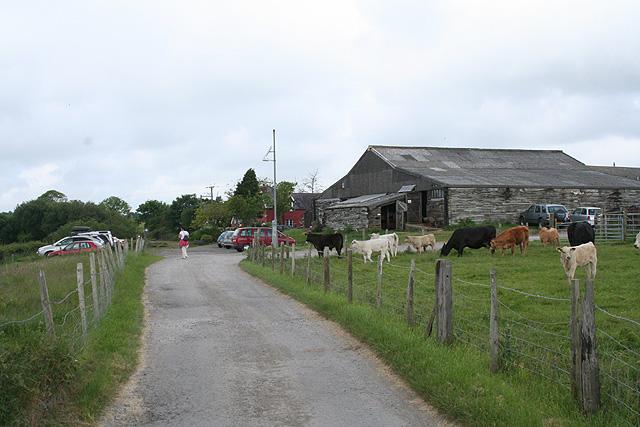 Swansea: Clyne Farm
