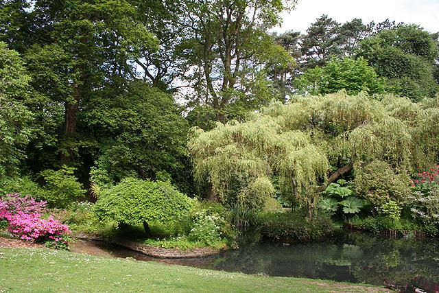 Swansea: Clyne Gardens