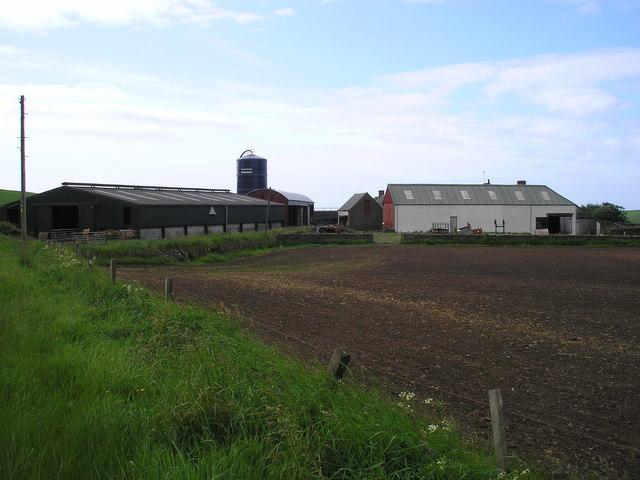 Meadowhead Farm