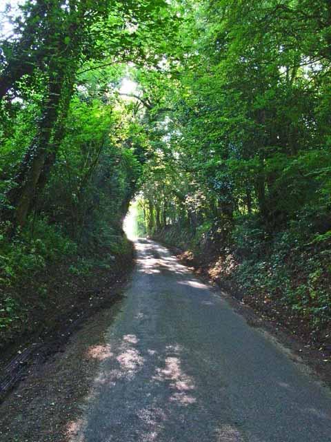 Sunken lane between Great Waldingfield and Edwardstone