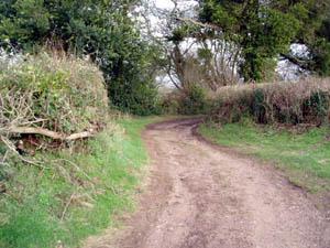 Higher Metcombe track