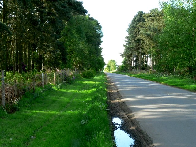 Cliffe Lane to the A163