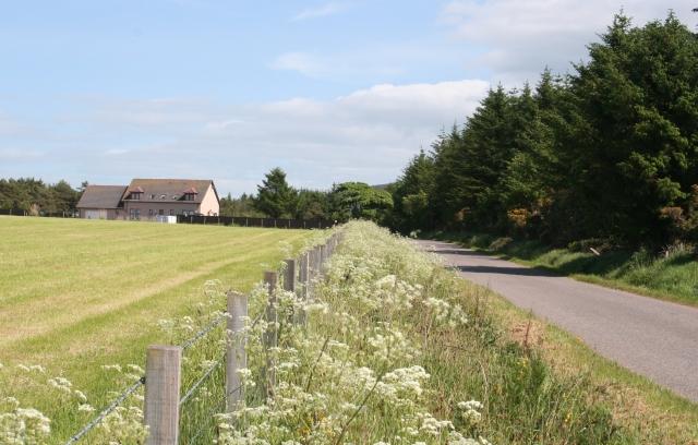 Moor of Scotstown