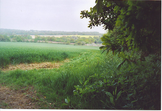 Sussex Weald, East Edge of Kingsfold.