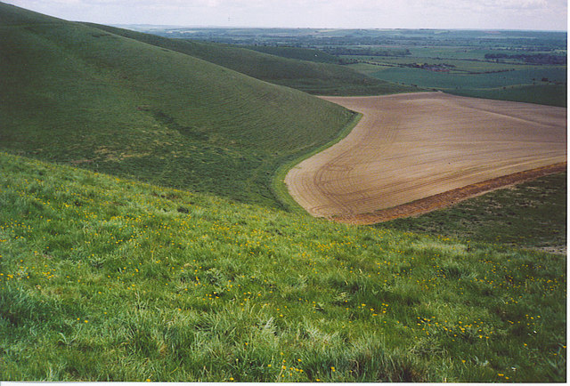 Downland West of Tan Hill.