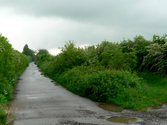 South Ings Lane, North Cave