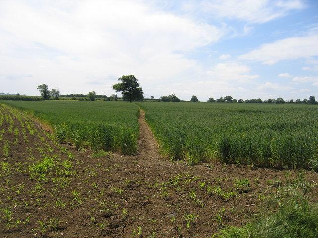 Footpath to Kent's Farm