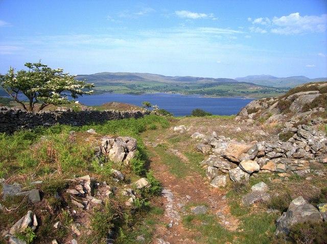 Track above Moelfryn Uchaf
