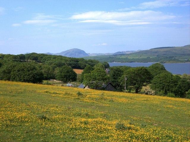 Moelfryn Isaf farm