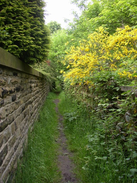Footpath alongside the M62 off Whitechapel Road, Cleckheaton