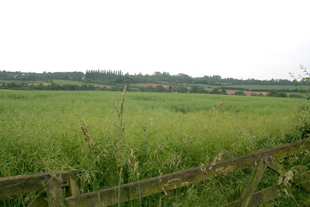 Farmland near Stanton-on-the-Wolds