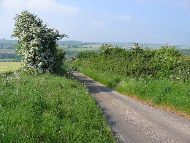 Lane to Fimber