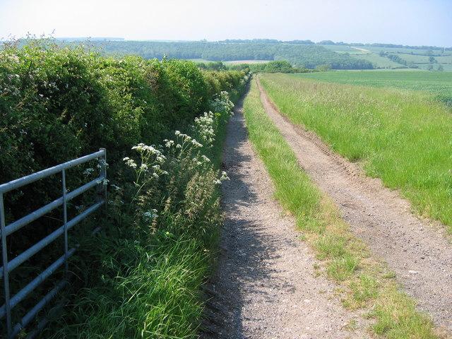 Grimston Hill - Track