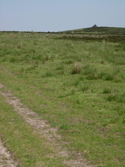 Salter Sitch, Totley Moor