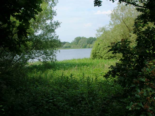 Pitsford Water Nature Reserve