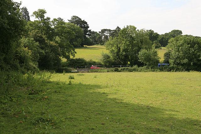 Fields between Colden Common and Brambridge