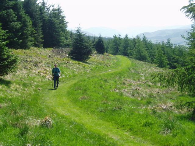 Southern Upland Way through Craig Douglas Forest