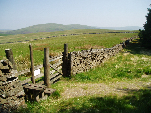 Stile and gate on Southern Upland Way