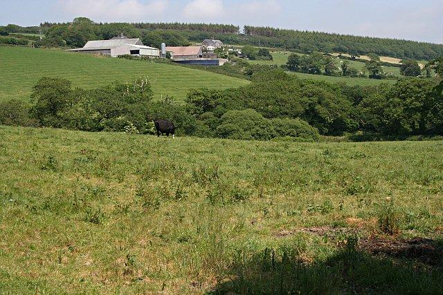 Across the Fields to Treveale Farm