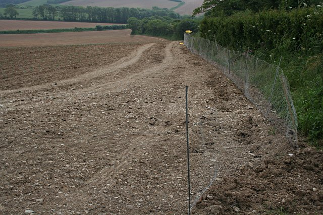Newly planted field with a low wire fence