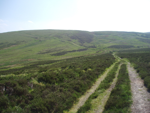 Southern Upland Way near Blake Muir