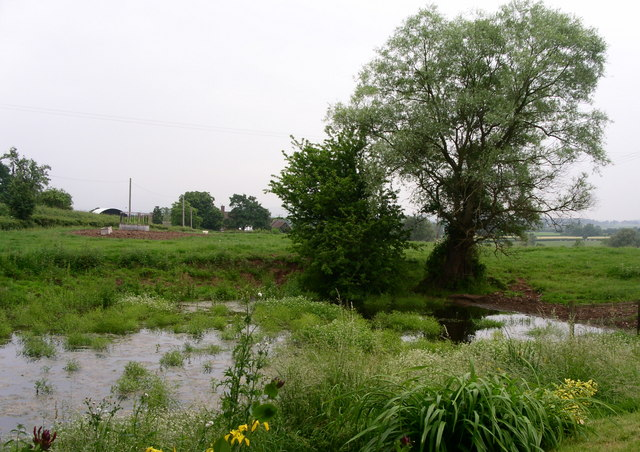 The pond by Ridgend Barn