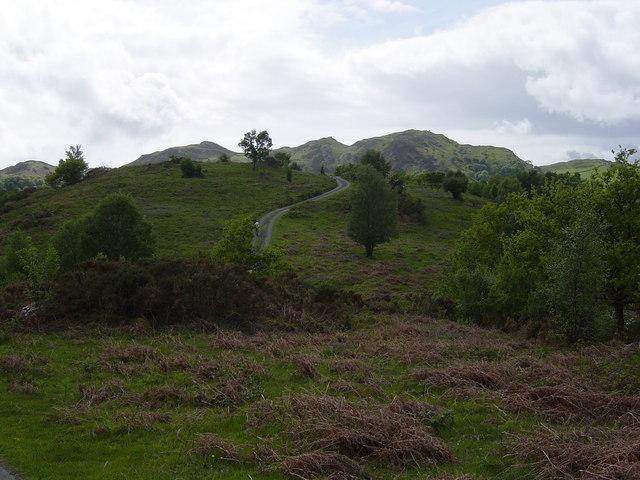 Meandering lane, Llwyn-iarth
