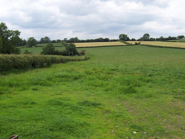 Fields west of Dallowview