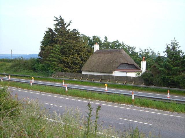 Tor Hill Cottage