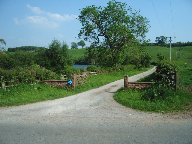 Road to Abbots Moss Farm