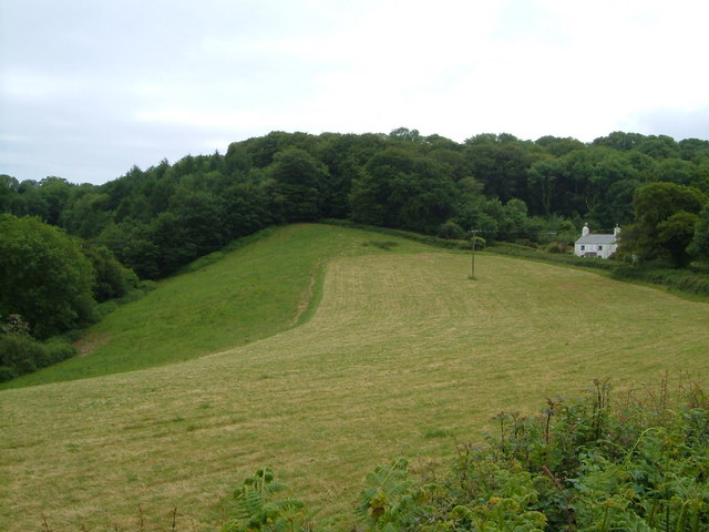 Boreston Foot and Crowdown Copse