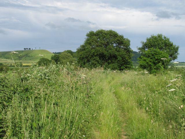 Footpath near Netherstreet