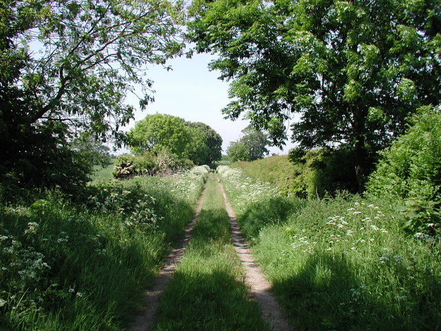 East Carr Road, Keyingham