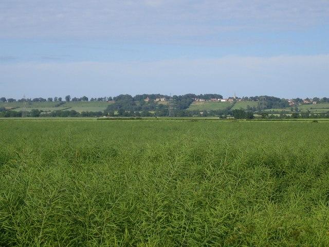 Fields from Castle Lane