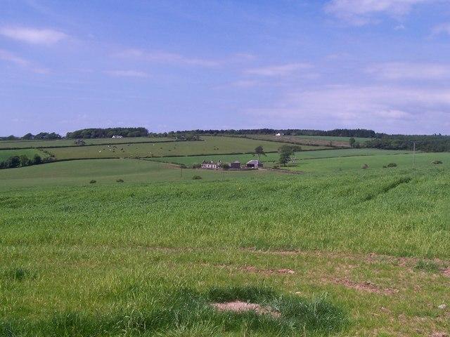 Bute, Barefield Farm