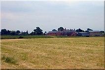 SJ5249 : Sunnyside Farm, Hetherson Green by Mike Harris