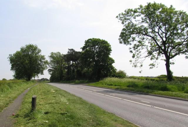 Winkerdale Hill