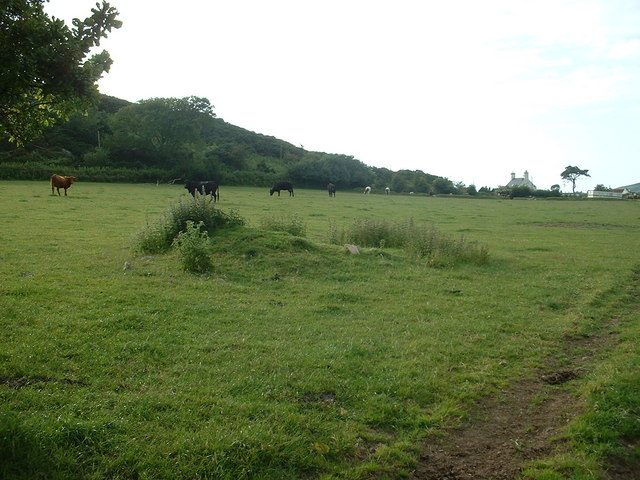 Farmland near Rhyd-y-clafdy