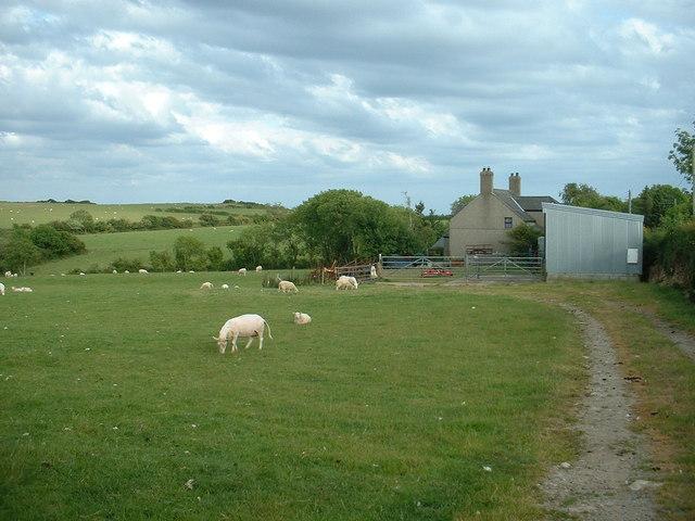 Ty Newydd farm