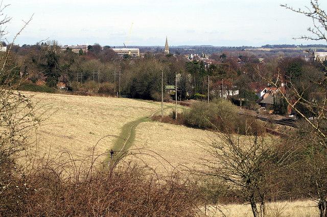 Bushfield, Winchester