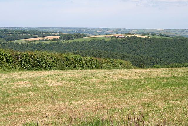 Stoodleigh: near Steart