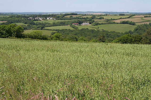 Stoodleigh: towards Oakford
