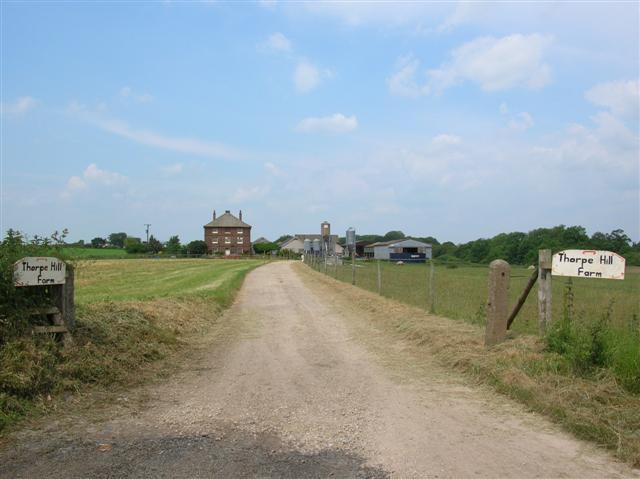 Thorpe Hill Farm
