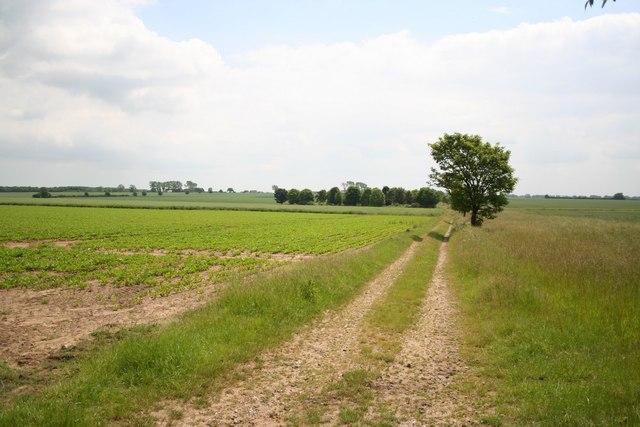 Farmland near Linwood