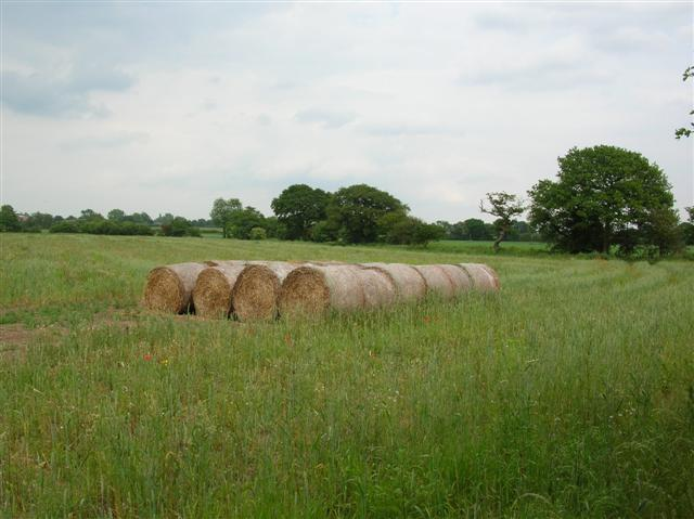 Haybales - Route 65