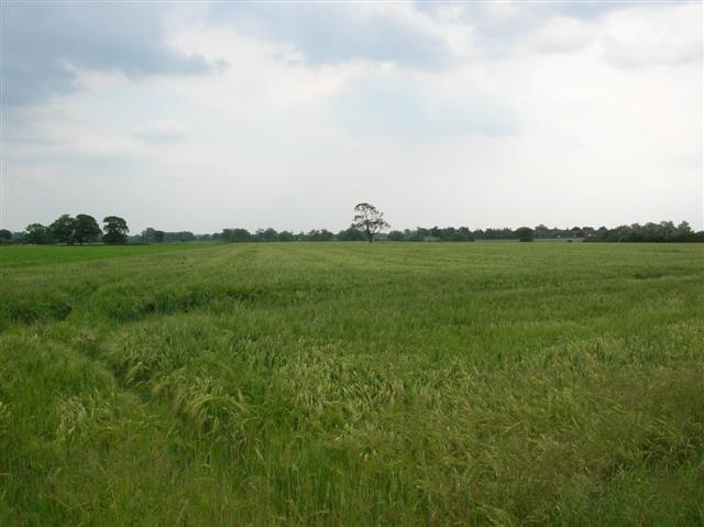 Farmland from Linton Woods Lane