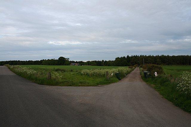 Looking southeast towards Maverston wood.