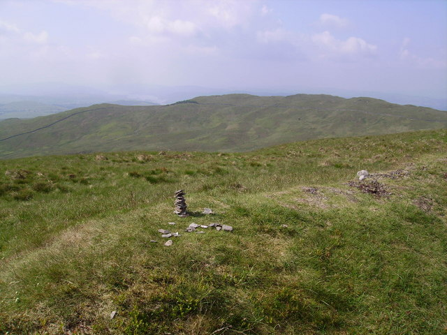 Cairn Sallows
